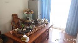 玉林接待室茶室