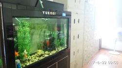 桂林公司环境